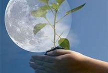 Gardening:  Lunar Planting / Gardening by the moon. / by Brenda Hess