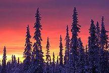 Finland / ❤