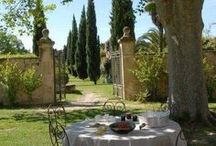 Garden Yard / Charming gardens, green grass, high trees, stylish bushes ... everything what makes a pretty garden !! /lnemnyi/lilllyy66/ Find more inspiration here: http://weheartit.com/nemenyilili