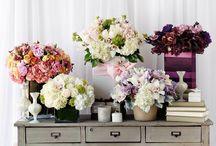Hidden Garden Floral Collections