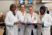 Laboratorioala / Laboratorioalan perustutkinnosta valmistut laborantiksi.
