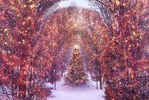 ツ Christmas Trees [Holidays] / Bautiful Christmas Trees to decorate your home for this special festivity.