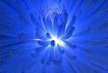 ツ Your World in BLUE [Colors] / Blue, a beautiful color, isn't it? / by ツ Alberto Mateo, Travel Photographer