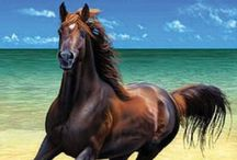 """Wild Horses / """"And Allah took a handful of southerly wind, blew His breath over it, and created the horse.... Thou shall fly without wings, and conquer without any sword.  Oh, Horse.""""    ~ Bedouin Legend"""