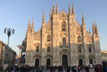 Gita a Milano / I nostri rivenditori autorizzati a Milano