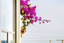 BEAUTIFUL GREECE / Greece