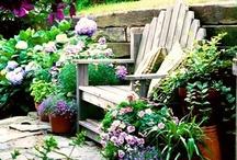 Garden ideas to love! / by Deborah Jones