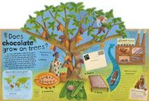Does chocolate grow on trees? / Where all the chocolate we eat comes from.