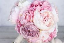 Peony Bridal Bouquets / Browse gorgeous peony bouquets in many types and colors for all types of brides!
