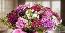 Bursa Çiçek / Bursa çiçek, sevgiliniz veya sevdikleriniz için binlerce farklı model arasından seçiminizi yapabilirsiniz.