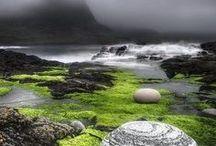 Scotland / by Suzanne Hamilton