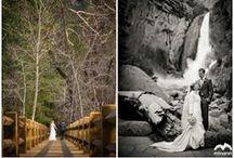 Eastern Sierra Weddings