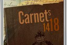 Carnets 14-18 / En vacances dans la maison familiale, Guillaume Naylor, tombe sur un vieux carnet de cuir. Au fil des pages, il découvre le témoignage poignant de son arrière-grand-père, Andrew. Envoyé sur les fronts de Belgique puis de France, ce jeune brancardier britannique y vit les grandes offensives de 1914 à 1918 et nous livre son récit de la Grande Guerre. Suivez les aventures d'Andrew d'Ypres au Chemin des Dames, en passant par les champs de batailles de l'Artois et de la Somme.