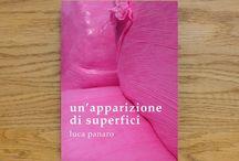 Libri pubblicati / Libri di Luca Panaro sulla fotografia e l'arte contemporanea