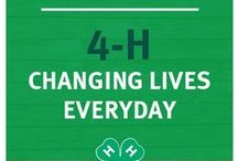 Promoting 4-H