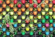 Garden / Ideeën voor de tuin