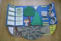Lapbooks in der Grundschule / Eine Sammlung von Lapbooks in der Grundschule