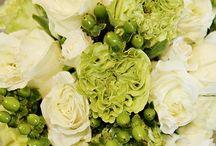 flowers / by yu