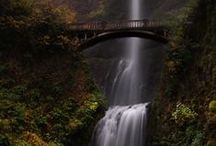 Portland Outdoors :: Picr / Enjoy the beauty of the northwest here in Portland, Oregon!