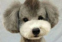 Zwierzaki / Fotografie, wyposażenie i pomysły do zrealizowania dla zwierzaków, kotów, psów i innych pupilów
