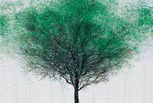 Trees / by Ideasfromtheforest Saartje Janssen