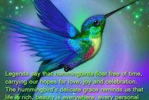 The beauty of birds