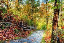 Romantic Roads
