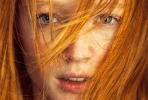 everything ginger / by Caro Olivier