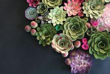 Nature & Nurture / by Rebecca Holmes