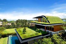 House / House ideas