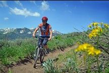 Summer at Stein Eriksen Lodge / From mountain biking to golf to scenic drives. Explore an abundance of recreational activities and cultural events in Park City, UT during the summer months. / by Stein Eriksen Lodge Deer Valley
