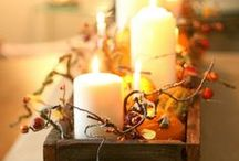 Seasonal: Autumn / Autumn decor, crafts, and activities / by Denise-Marie Griswold