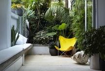 Outdoor relaxing / by Katja Vandendurpel