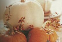 fall is in the air! / Pumpkin, winter squashes, root veggies...and all things fall.