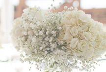 Wedding day!  / by Dawn Claydon