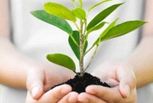 Green Living / Making the world a better place is sometimes easier than you might think. Here are our best tips to create a more sustainable and responsible way of living.