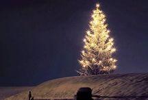 Traditional Christmas ✨