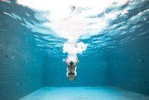 Splash / underwater splash, plongeons