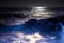 Ocean / by Skye Malone