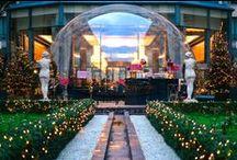La Bulle du Collectionneur / A huge, transparent, ephemeral and exclusive bubble…