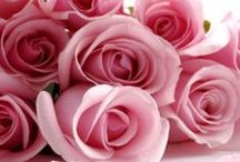 FLOWERS for You / by ~❤~ Angelina Designs ~❤~