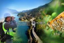 Biodiversité / Eurovia a signé en 2013 un partenariat avec le Muséum national d'Histoire naturelle pour engager des actions concrètes en faveur de la biodiversité.