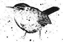 My work: Birds in ink / birds, hares, wildlife,  Michelle Campbell Art. Licensed Art, Licensing, Art for Licensing.