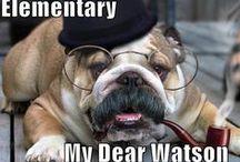 """""""Elementary my dear Watson"""""""