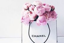 CHANEL / All Chanel Everything