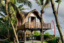 TREE-HOUSE / Enjoy awesome treehouse, jungle and wild life !!! :)
