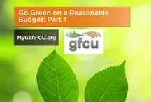Going Green  / Tips on how to 'go green' on a budget