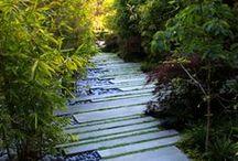 Gardening / by Danielle Ellegood