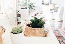 Home / Decoration scandinave, pastel, vintage, cactus, ...