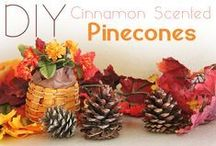 It's Fall Baby! / Everything fall from recipes to drinks to decor.